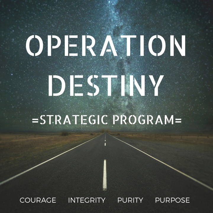 Operation-Destiny-Men